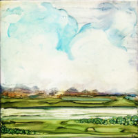 simple sky with green grass landscape