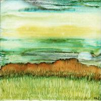long grass landscape