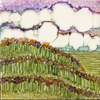 purple field of flowers landscape
